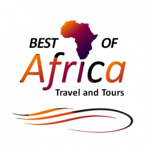 lovelocal-logo-design-best-of-africa-travel-and-tours